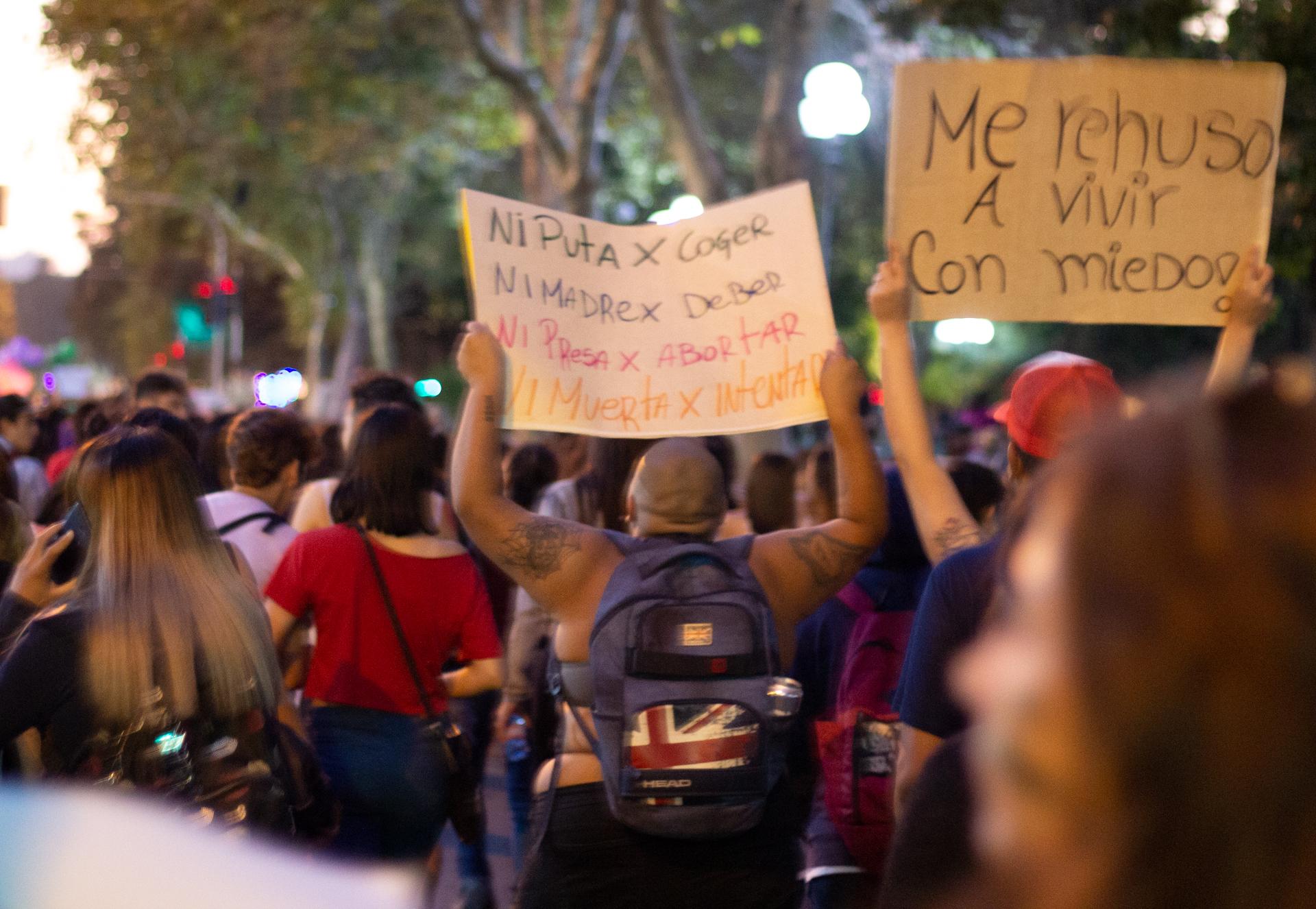 Carteles en la Marcha Feminista del 08/03/2019